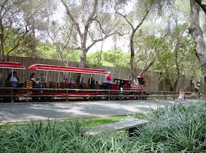 Santa Barbara Zoo Train, courtesy Wikipedia Commons.