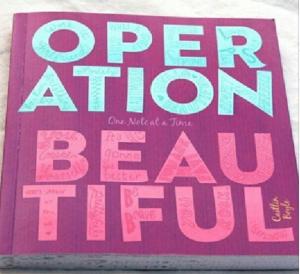 Courtesy Operation Beautiful