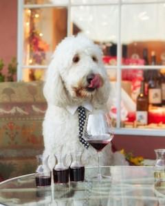 Courtesy Wandering Dog Wine Bar