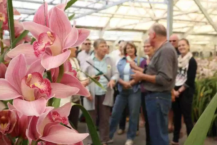 Carpinteria Greenhouse and Nursery Tour, courtesy photo.