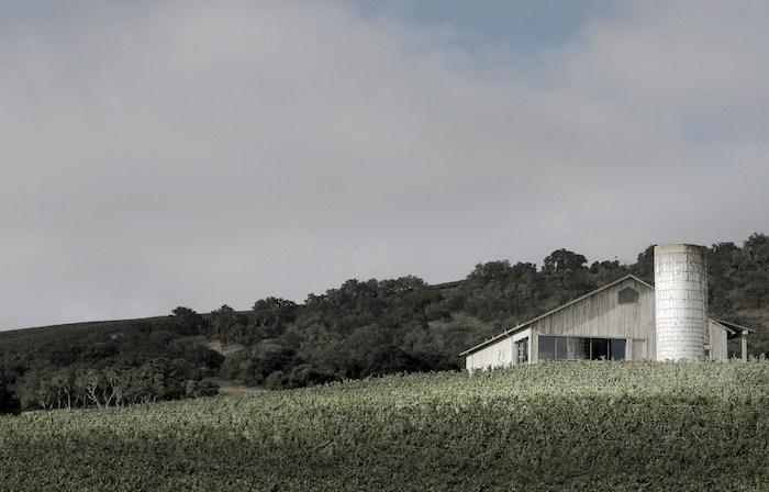 Spear Winery & Vineyard view from the vineyard, photo by Blakeney Sanford.