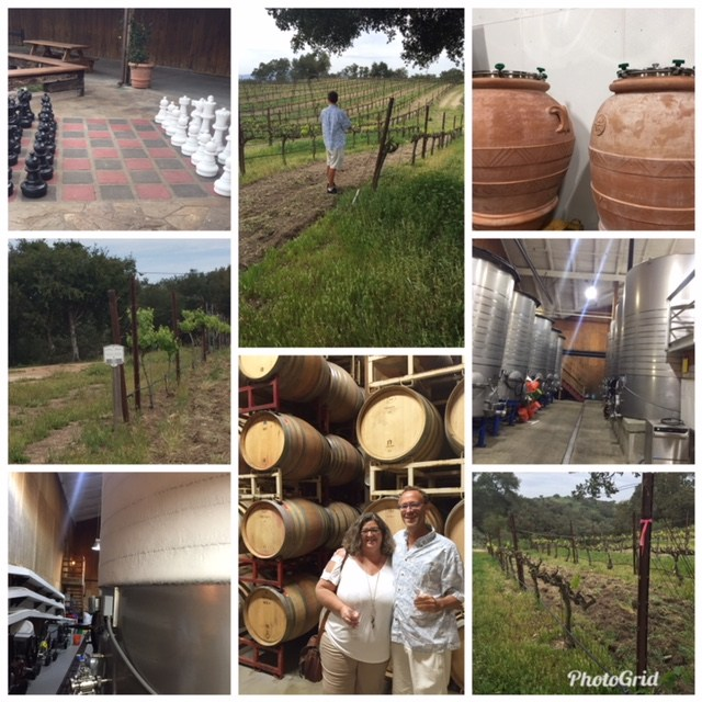 Some snippets from our tour of Zaca Mesa Winery & Vineyard, photos by Zak Klobucher.