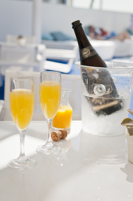 Photo vxla on Flickr: Pool-side Mimosas at The Standard Hotel, CC BY 2.0, courtesy Wikipedia Commons.