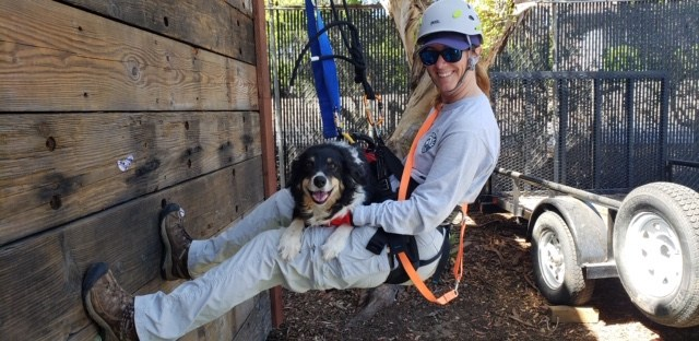 Rescue dog Mojo with Handler Tracee Walker, courtesy photo.