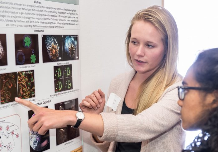 Undergraduate Research Colloquium is part of Undergraduate Research Week. Previous Undergraduate Research Colloquium participants have represented disciplines across science and engineering and the social sciences, humanities and fine arts. Courtesy photo.