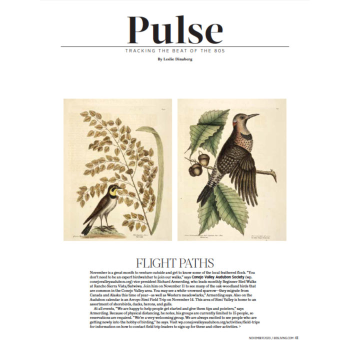 Flight Paths, originally published in the November 2020 issue of 805 Living Magazine.