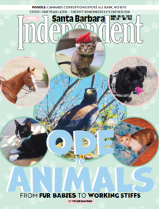 Santa Barbara Independent Cover, March 18, 2021